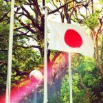 体操の橋本大輝選手は白井健三選手以来の高校生代表で兄も現役!武器は何?